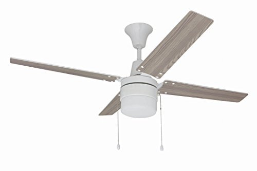 Wakefield Collection 48 Inch Ceiling Fan