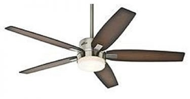 Hunter 59039 Windemere 54-inch Indoor Ceiling Fan with Light & Remote