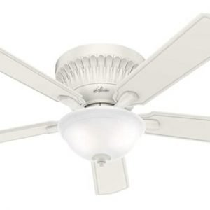 Hunter Chauncey Indoor Low Profile Ceiling Fan